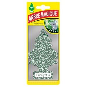http://www.newco-france.com/4866-5200-thickbox/arbre-magique-eucalyptus.jpg