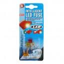 FUSIBLE FICHE PM + INDIC. A LED x 5 pces (5 à 25A)